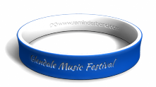 Benefit Concert Fundraising Wristband